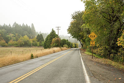 Photograph - Fog On Placer Road by Tom Cochran
