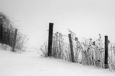 Sandra Silva Photograph - Fog On Snow by Sandra Silva