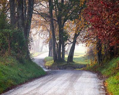 Photograph - Fog On Sparks Lane by TnBackroadsPhotos