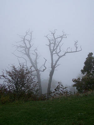 Photograph - Fog On The Blue Ridge Parkway by rd Erickson
