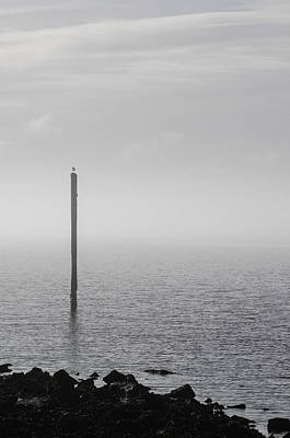 Photograph - Fog On The Cape Fear River On Christmas Day 2015 by Willard Killough III