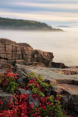 Photograph - Fog On The Cliffs by Darylann Leonard Photography