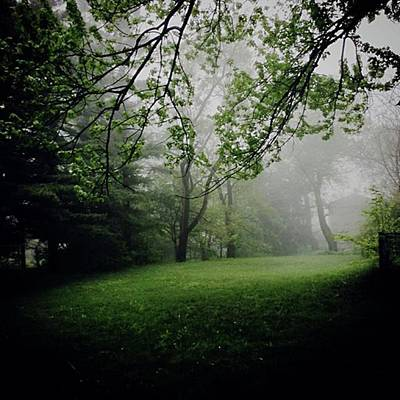 Photograph - Fog On The Green by Frank J Casella