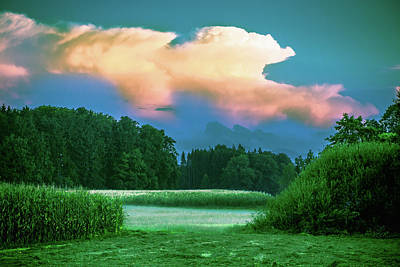 Photograph - Fog On The Meadow by Holger Debek