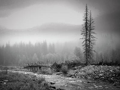 Photograph - Fog On The Mountains by Philip Rispin