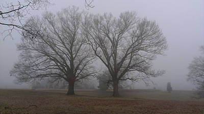 Photograph - Fog On The Yorktown Battlefield by Liza Eckardt