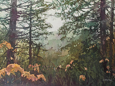 Evergreen Trees Painting - Fog Over Croisan Creek by Jenny Armitage