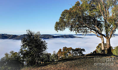 Photograph - Fog Over Hill End by Lexa Harpell