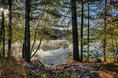 Photograph - Fog Over The Pond by Jane Luxton