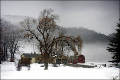 Achieving Royalty Free Images - Fog Over Willow Farm Royalty-Free Image by Wayne King
