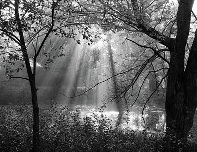 Photograph - Fog Rays by Betsy Zimmerli