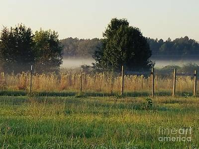 Photograph - Fog Roll by Maria Urso
