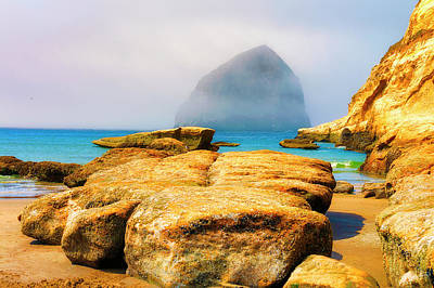 Photograph - Fog Rolls In At Cape Kiwanda by Dee Browning