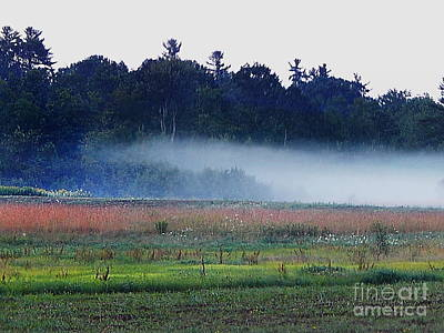 Photograph - Fog Rolls In by Expressionistart studio Priscilla Batzell