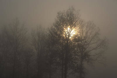 Photograph - Fog Shine by J R Seymour