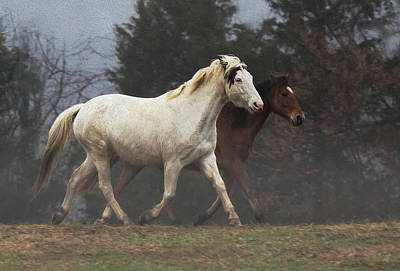 Photograph - Fog Trot by Art Cole