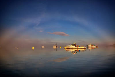 Fogbow In Lubec Harbor Art Print