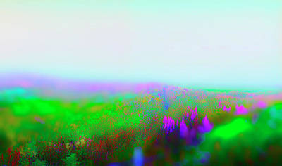 Photograph - Fogged Floral by Jan W Faul