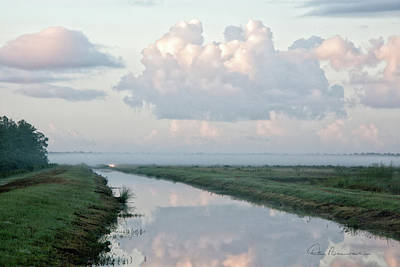 Dan Beauvais Royalty Free Images - Foggy Alligator River Refuge 1846 Royalty-Free Image by Dan Beauvais