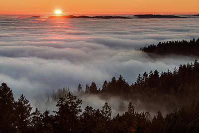 Photograph - Foggy And Sunny  by Janet Kopper