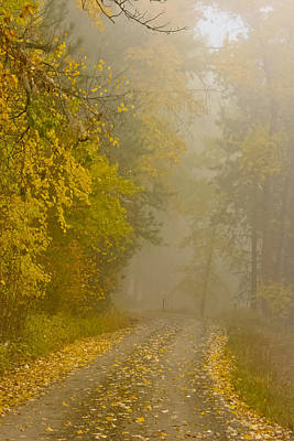 Foggy Autumn Morn Art Print