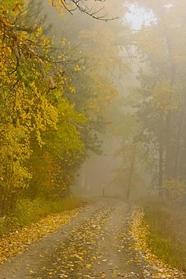 Photograph - Foggy Autumn Morn by Albert Seger