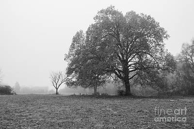 Photograph - Foggy Autumn Morning Grayscale by Jennifer White