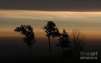Photograph - Foggy Awakening by Elizabeth Winter