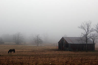 Photograph - Foggy Barnyard by Jonas Wingfield