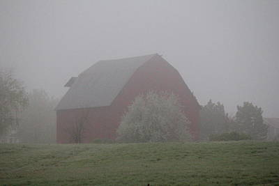 Photograph - Foggy Country Morning by Trent Mallett