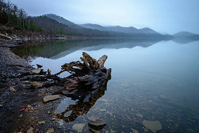 Photograph - Foggy Cove by Michael Scott