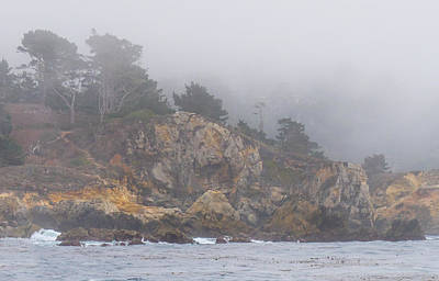 Photograph - Foggy Day At Point Lobos by Derek Dean