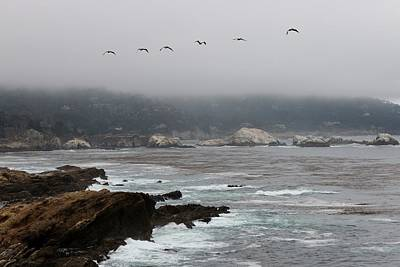 Photograph - Foggy Day At Point Lobos Reserve - 4 by Christy Pooschke