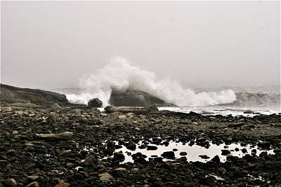 Photograph - Foggy Day At The Coast by Lois Lepisto