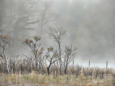 Photograph - Foggy Day Bliss by Marcia Lee Jones