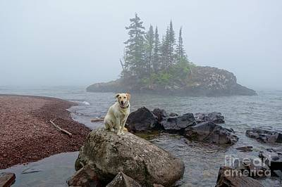 Photograph - Foggy Day On The Superior Hiking Trail by Sandra Updyke