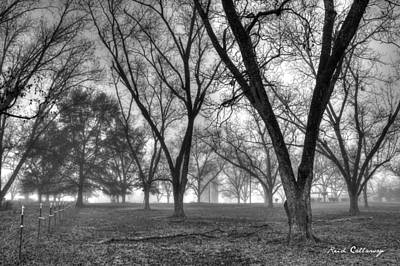 Photograph - Foggy Day Pecans Landscape Farm Scene by Reid Callaway