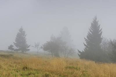 Foggy Day - Vosges Mountains - France Art Print