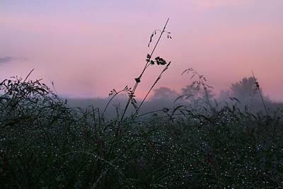 Photograph - Foggy Dew by Kathryn Meyer