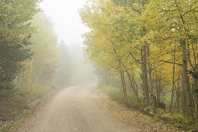 Photograph - Foggy Dirt Road In The Autumn Season by James BO Insogna