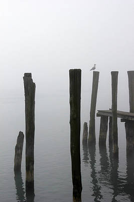 Photograph - Foggy Dock With Gull 53 by Mary Bedy
