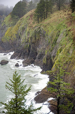 Photograph - Foggy Evening At Cape Disappointment by Anthony Doudt