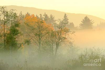 Photograph - Foggy Fall by Frank Townsley