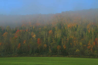 Photograph - Foggy Fall Morning In The Forest by Dan Sproul