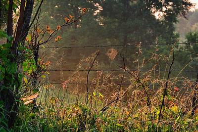 Photograph - Foggy Farm Field With Spider Web by Kathryn Meyer