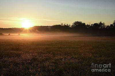Photograph - Foggy Field At Sunrise by Linda Mesibov