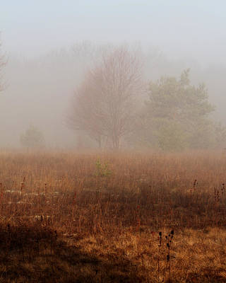 Photograph - Foggy Field by Scott Hovind