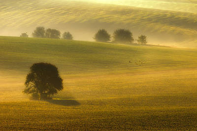 Moravia Photograph - Foggy Fields by Piotr Krol (bax)