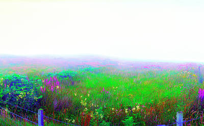 Foggy Flowers Art Print