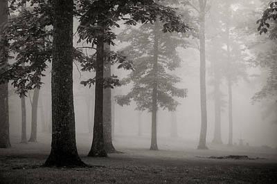 Photograph - Foggy Forest - Bw by Joye Ardyn Durham